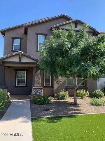 10427 E Natal Avenue, Mesa, AZ 85209 (MLS #6308673) :: Keller Williams Realty Phoenix