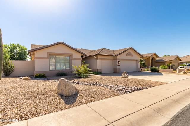 7055 W Campo Bello Drive, Glendale, AZ 85308 (MLS #6308674) :: Keller Williams Realty Phoenix