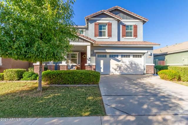 7146 E Osage Avenue, Mesa, AZ 85212 (MLS #6308678) :: Elite Home Advisors