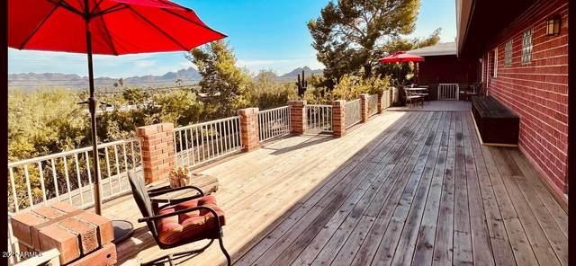 2601 E Voltaire Avenue N, Phoenix, AZ 85032 (MLS #6308679) :: Dave Fernandez Team | HomeSmart