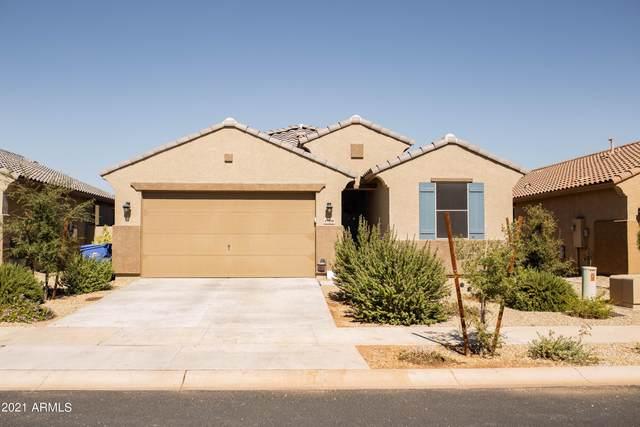 17950 W Tina Lane, Surprise, AZ 85387 (MLS #6308686) :: Keller Williams Realty Phoenix