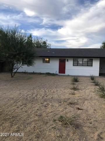 216 E Butler Drive, Phoenix, AZ 85020 (MLS #6308717) :: The Laughton Team