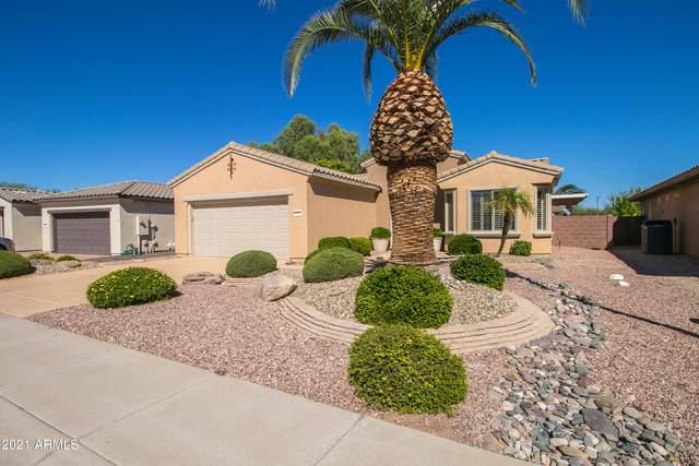 18755 N Summerbreeze Way, Surprise, AZ 85374 (MLS #6308775) :: Long Realty West Valley