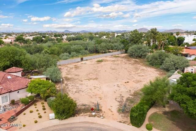 16223 N 1ST Avenue, Phoenix, AZ 85023 (MLS #6308777) :: The Laughton Team