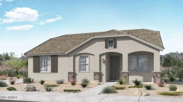 25172 N 142ND Drive, Surprise, AZ 85387 (MLS #6308825) :: The Bole Group | eXp Realty
