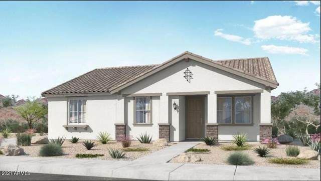 25202 N 142ND Drive, Surprise, AZ 85387 (MLS #6308854) :: The Bole Group | eXp Realty