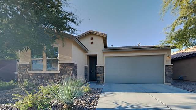 12041 W Cottontail Lane, Peoria, AZ 85383 (MLS #6308899) :: Elite Home Advisors