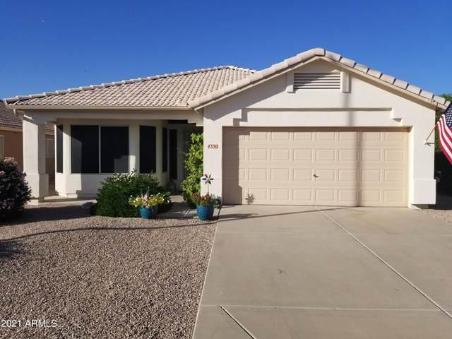 4330 E Birchwood Circle, Mesa, AZ 85206 (MLS #6308912) :: The Laughton Team