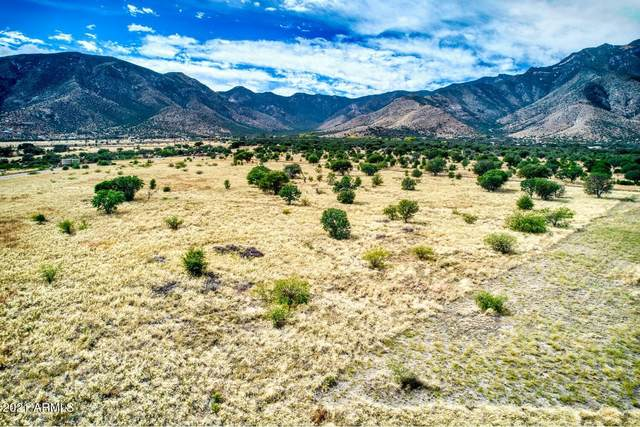TBD S Bryerly Drive, Hereford, AZ 85615 (MLS #6308933) :: Conway Real Estate