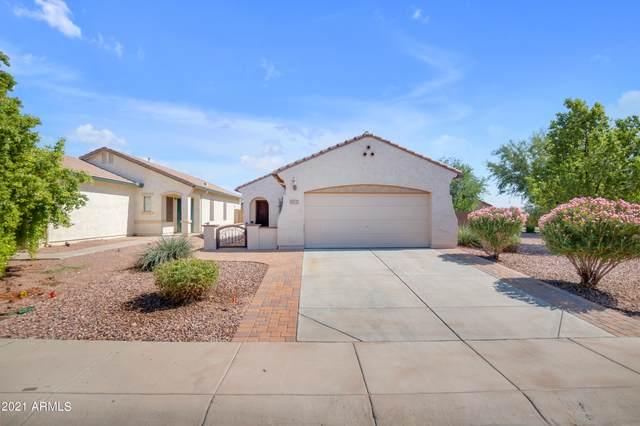 2225 N Pecos Court, Florence, AZ 85132 (MLS #6308934) :: The Laughton Team