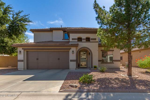 3767 E Orchid Lane, Gilbert, AZ 85296 (MLS #6308953) :: Keller Williams Realty Phoenix
