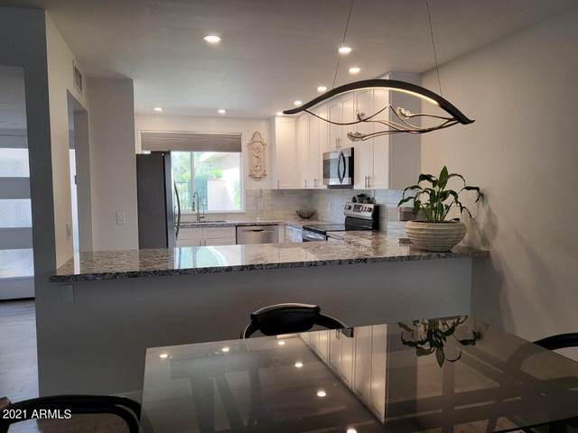 7630 E Bonnie Rose Avenue, Scottsdale, AZ 85250 (MLS #6308981) :: The Bole Group | eXp Realty