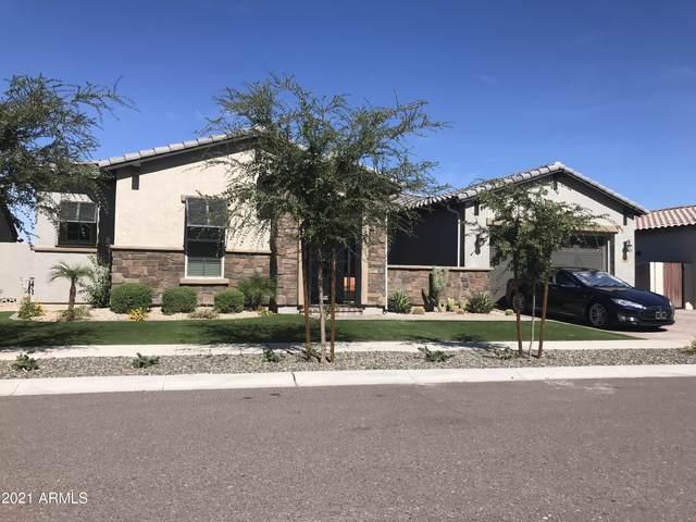 3110 E Gary Way, Phoenix, AZ 85042 (MLS #6308987) :: Klaus Team Real Estate Solutions