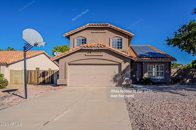3414 E Sequoia Drive, Phoenix, AZ 85050 (MLS #6309020) :: Yost Realty Group at RE/MAX Casa Grande