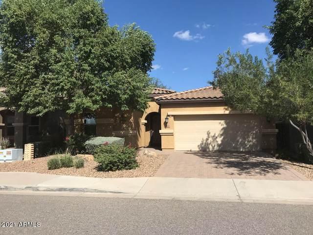 28243 N Welton Place, San Tan Valley, AZ 85143 (MLS #6309022) :: Elite Home Advisors