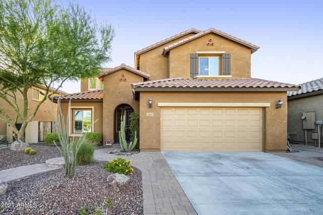 26422 N 107TH Lane, Peoria, AZ 85383 (MLS #6309043) :: Elite Home Advisors