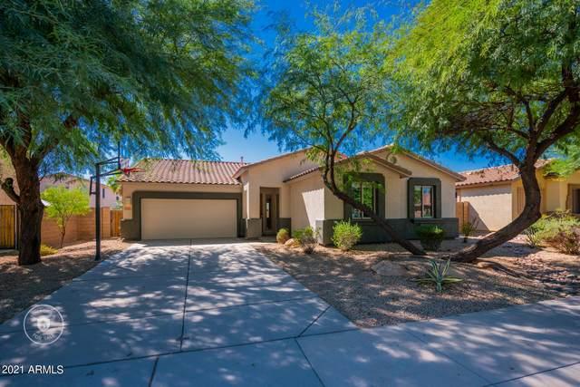 7797 W Adam Avenue, Peoria, AZ 85382 (MLS #6309056) :: Elite Home Advisors