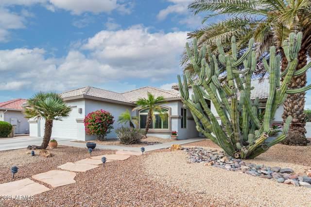 9242 E Diamond Drive, Sun Lakes, AZ 85248 (MLS #6309072) :: Midland Real Estate Alliance