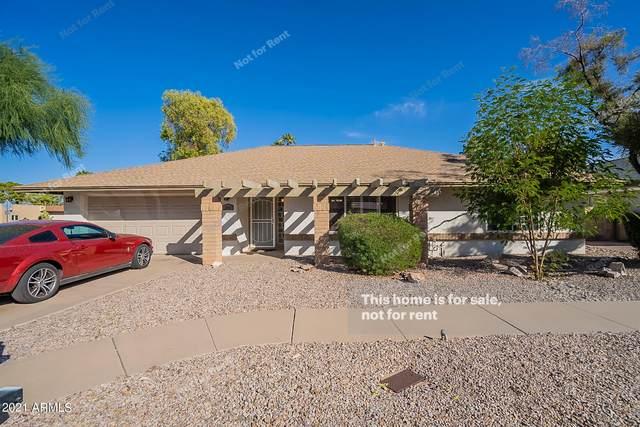 1866 W Natal Avenue, Mesa, AZ 85202 (MLS #6309113) :: The Bole Group | eXp Realty