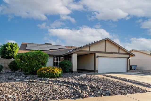 13 W Sequoia Drive, Phoenix, AZ 85027 (MLS #6309120) :: Fred Delgado Real Estate Group