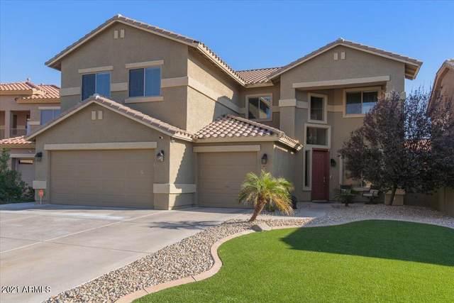 44327 W Windrose Drive, Maricopa, AZ 85138 (MLS #6309147) :: The Garcia Group