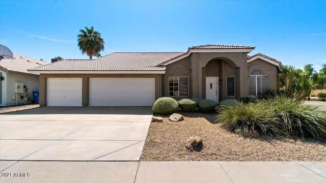 4401 E Danbury Road, Phoenix, AZ 85032 (MLS #6309151) :: The Copa Team | The Maricopa Real Estate Company