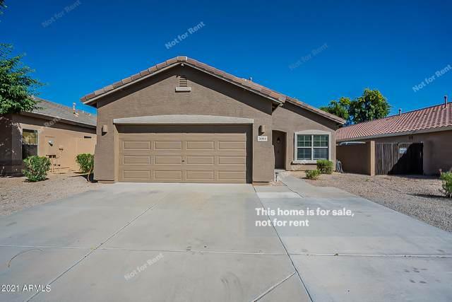 3084 W Hayden Peak Drive, Queen Creek, AZ 85142 (MLS #6309172) :: Elite Home Advisors