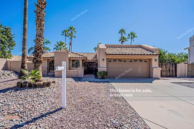 3629 E Oraibi Drive, Phoenix, AZ 85050 (MLS #6309173) :: Yost Realty Group at RE/MAX Casa Grande