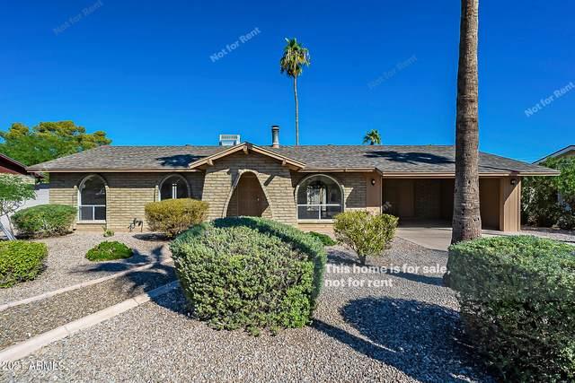 2814 E Dahlia Drive, Phoenix, AZ 85032 (MLS #6309174) :: The Daniel Montez Real Estate Group