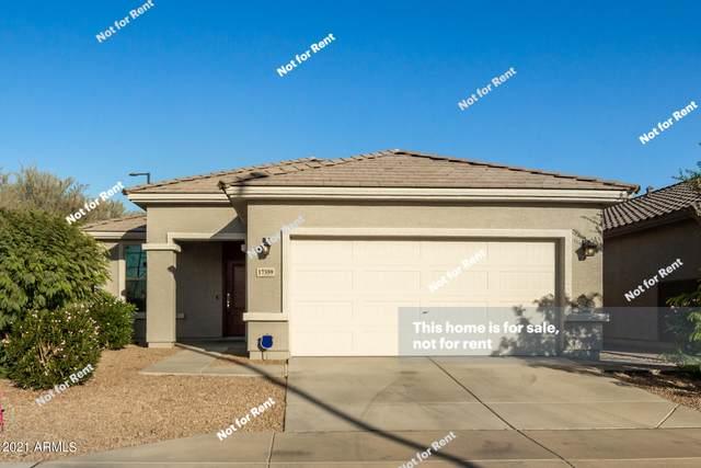 17359 N 114TH Drive, Surprise, AZ 85378 (MLS #6309175) :: The Laughton Team