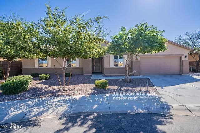 5649 W Sunland Avenue, Laveen, AZ 85339 (MLS #6309184) :: The Laughton Team
