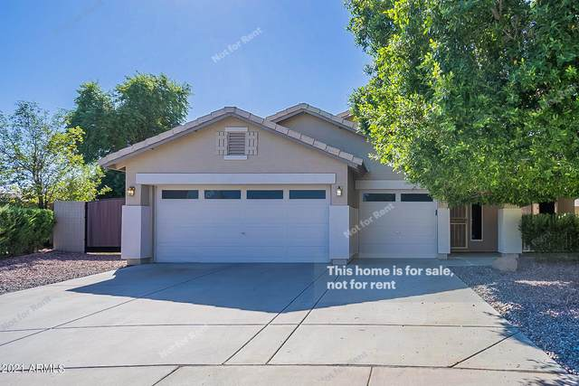 12225 W Jackson Street, Avondale, AZ 85323 (MLS #6309187) :: Hurtado Homes Group