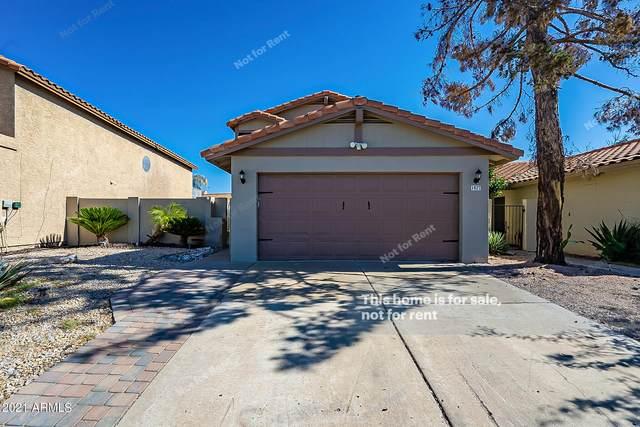1027 N Sunnyvale, Mesa, AZ 85205 (MLS #6309189) :: Elite Home Advisors