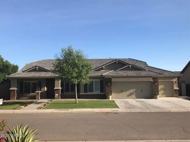 3665 E Meadow Land Drive, San Tan Valley, AZ 85140 (MLS #6309208) :: Dave Fernandez Team | HomeSmart