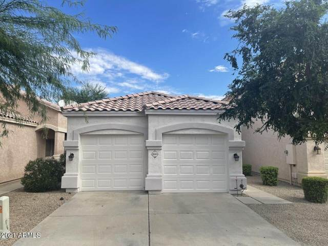 3564 W Chama Road, Glendale, AZ 85310 (MLS #6309222) :: The Property Partners at eXp Realty