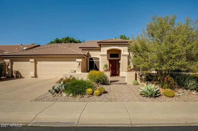 5032 E Michelle Drive, Scottsdale, AZ 85254 (MLS #6309241) :: Dave Fernandez Team | HomeSmart