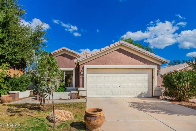6219 N 69TH Drive, Glendale, AZ 85303 (MLS #6309260) :: The Property Partners at eXp Realty