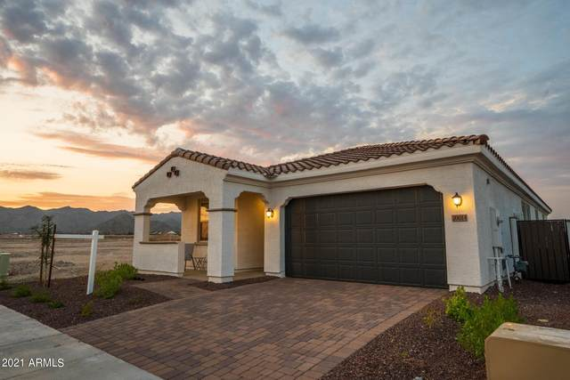 20014 W Turney Avenue, Litchfield Park, AZ 85340 (MLS #6309264) :: Hurtado Homes Group