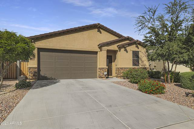 294 W Salali Trail, San Tan Valley, AZ 85140 (MLS #6309282) :: The Laughton Team