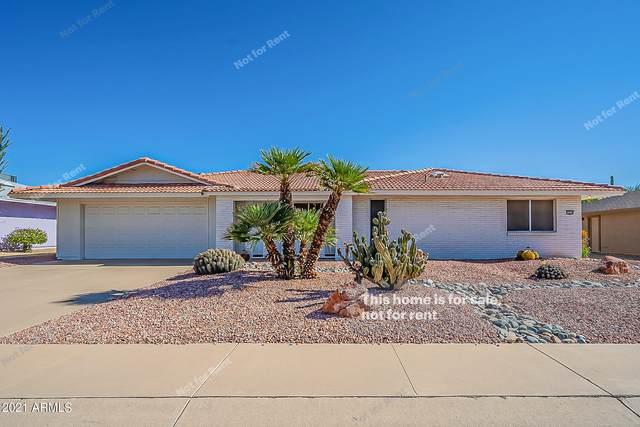 13438 W Castle Rock Drive, Sun City West, AZ 85375 (MLS #6309285) :: West USA Realty