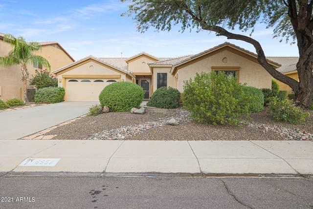 6956 W Honeysuckle Drive, Peoria, AZ 85383 (MLS #6309289) :: neXGen Real Estate