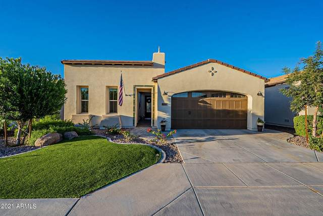 804 E La Palta Street, San Tan Valley, AZ 85140 (MLS #6309321) :: The Laughton Team