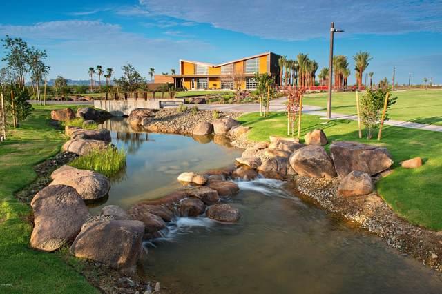 9521 E Solina Avenue, Mesa, AZ 85212 (MLS #6309323) :: The Daniel Montez Real Estate Group