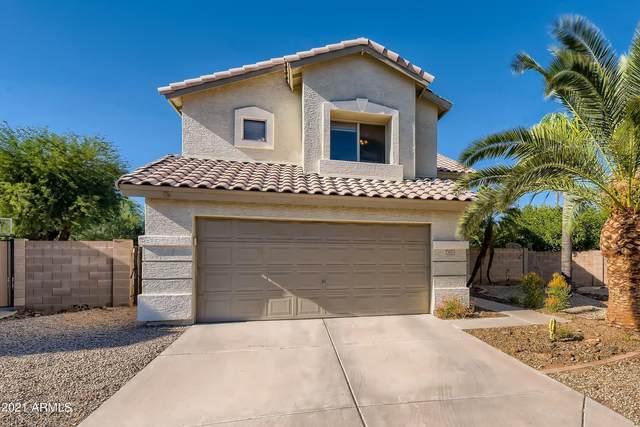 3902 E Rosemonte Drive, Phoenix, AZ 85050 (MLS #6309334) :: Yost Realty Group at RE/MAX Casa Grande
