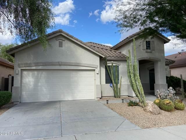 2226 W Calle Del Sol, Phoenix, AZ 85085 (MLS #6309337) :: West USA Realty