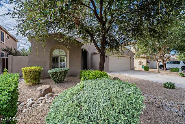 3307 E Bluejay Drive, Chandler, AZ 85286 (MLS #6309338) :: The Property Partners at eXp Realty