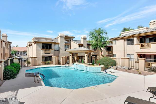 1880 E Morten Avenue #114, Phoenix, AZ 85020 (MLS #6309348) :: Power Realty Group Model Home Center