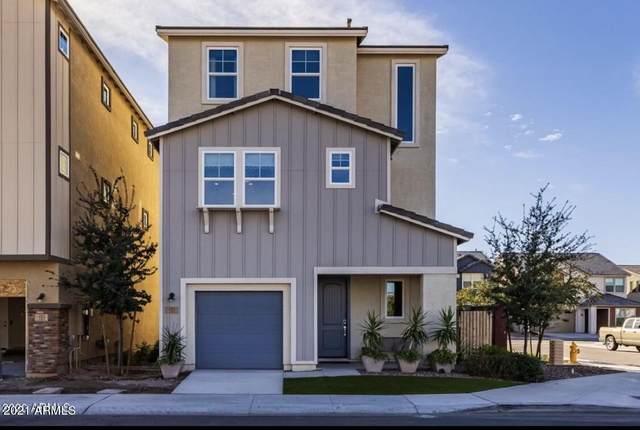 707 W Browning Place, Chandler, AZ 85286 (MLS #6309358) :: Yost Realty Group at RE/MAX Casa Grande