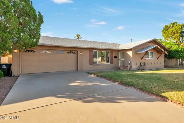 6413 E Parkview Drive, Scottsdale, AZ 85257 (MLS #6309391) :: Dave Fernandez Team | HomeSmart