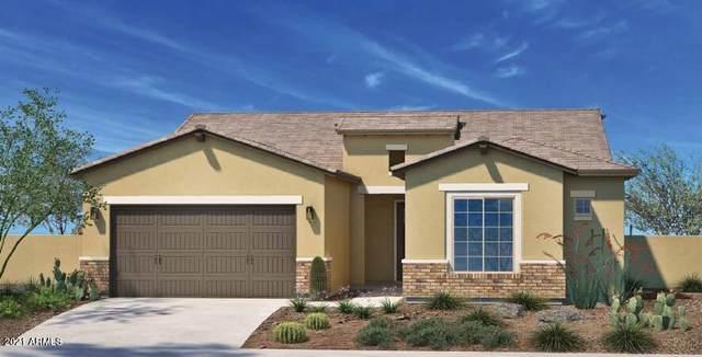 5958 N 189TH Drive, Litchfield Park, AZ 85340 (MLS #6309398) :: Elite Home Advisors